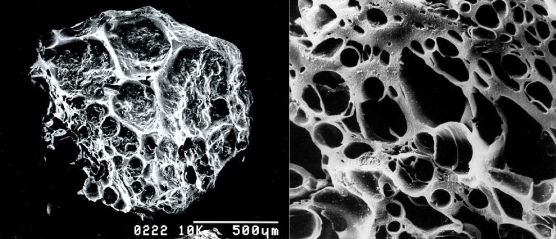 carboni attivi studio assorbimento