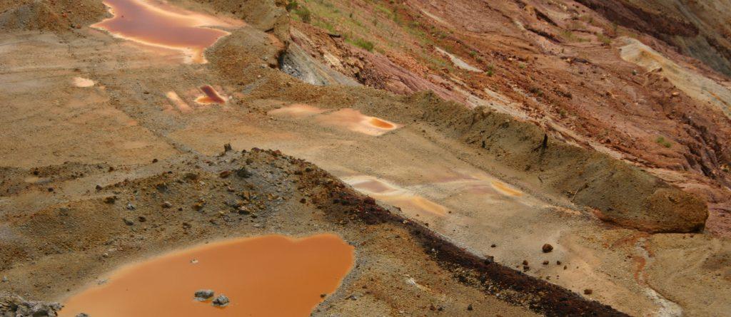 ecosurvey terreni contaminati