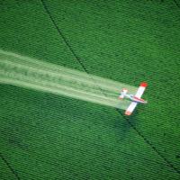 nitrates fertilizer