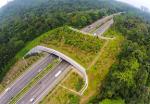 Costruzioni stradali Green Public Procurement