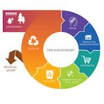 Circular Economy and the Green Public Procurement