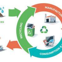 ecosurvey circular-economy1