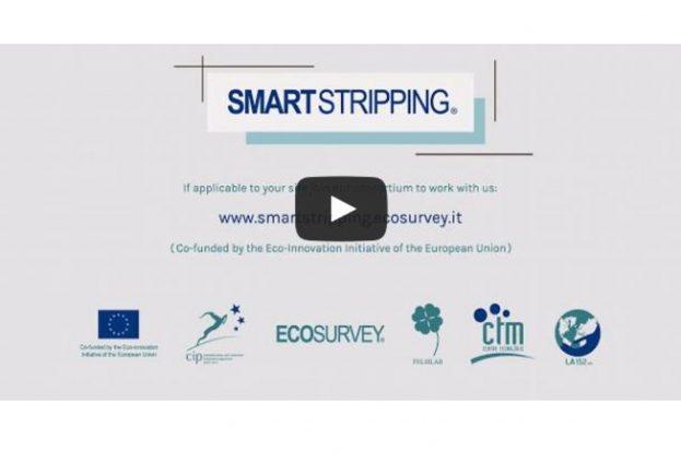 Logo Smartstripping